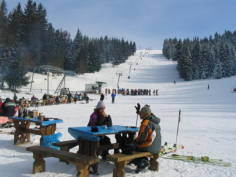 Жилье на горнолыжных курортах Карпат Львовской области